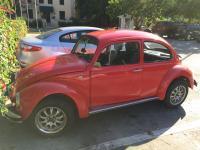 Bug in Cuba