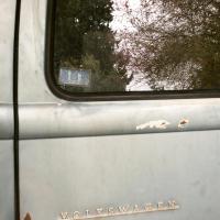 Window Seals