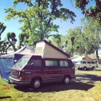 Vanagon spottings at a Bluegrass campout