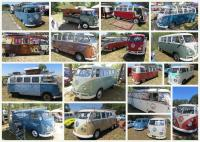 The Ranch Run Transporter Collage (only SOME of the Split Window buses there)