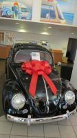 1954 Bug at  Niello Volkswagen in Sacramento, CA