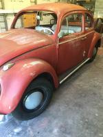 61' og paint bug