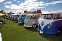 VWs on the Green, 2015