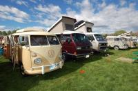 Vanagons from Volkswagens on the Green