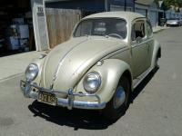 My 1958 Type 1, Light Bronze, Restored