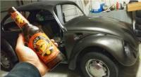 72 bug and brew
