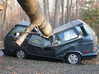 Vanagon vs. Tree