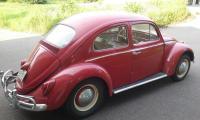 My new 1963 VW Beetle 'Teddy'