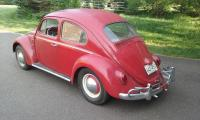 My new 1963 VW Beetle 'Teddy'