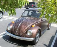 BugWrapTint