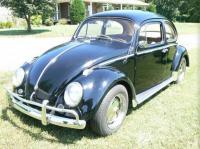 63 Beetle