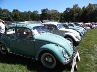 Flanders VW show