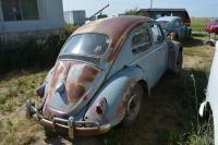 1959 beetle