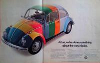 Ballyhoo beetle