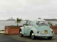 bahama blue bug 1965 65 coast