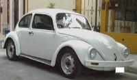 my 1999 beetle
