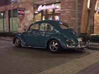 63 Gulf Blue Beetle
