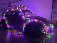 TheDon's jingle bug