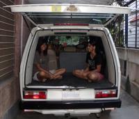 Dogs in vans