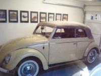 1957 5 year restoration - Daisy