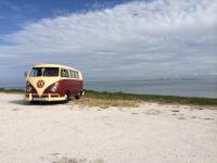 66 camper bus