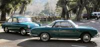 Type 34 and Notchback