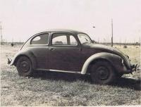 Early post war beetles