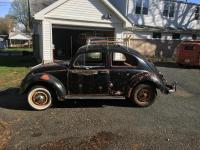 1960 bug