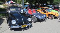 Bugs (general photos) at Kelley Park, San Jose, CA April 17th, 2016