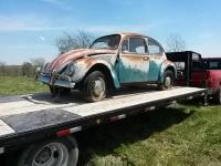 '66 java green patina beetle