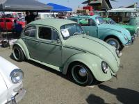 bug-o-rama may 2016