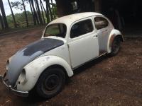 1955 beetle