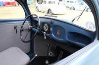 Blue Split-Window Bug
