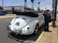 Huge bug convertible