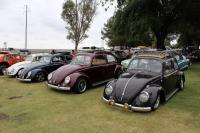 Ragtop Beetle lineup