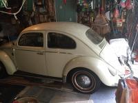 1961 barnfind Beetle