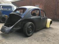 Beetle project