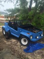 73 Thing Buggy Front