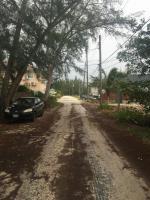 Road in Bahamas.