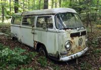 68 Westy Bus in Woods