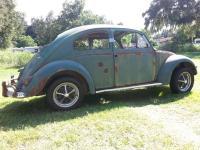 1956 bug