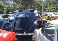 VW Beetle Oval 1956