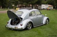 1964 bug project