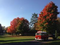 Dormobile in the Fall