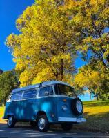 1977 vw transporter in fall colors in Denver