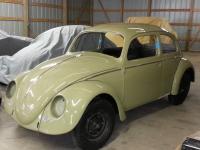 64 bug color