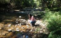 wilderness side