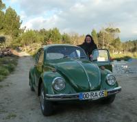 My 1970 LHD Beetle