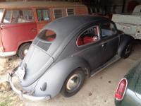 '55 bug