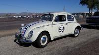 Herbie Ragtop Beetle